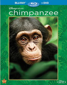 Chimpanzee Blu-ray
